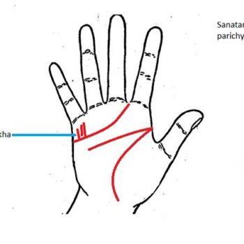 garis_tangan_anak