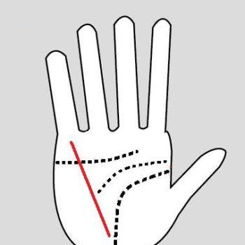 garis_tangan_kesehatan