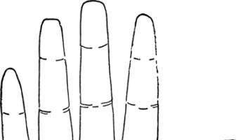 tangan_mana_yang_dibaca